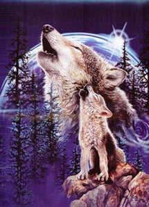 Blanket Queen Signature- Wolf Ct- Harmony of Wolves