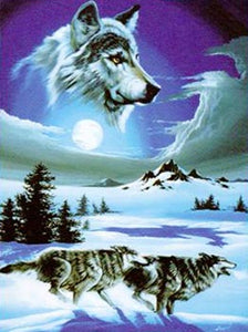 Blanket Queen Signature- Wolf Ct- Running Wolves