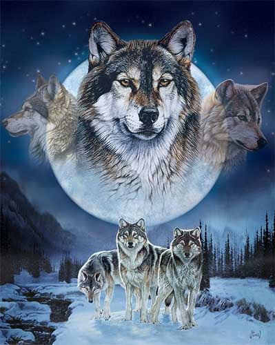 Blanket Queen Signature Select-  Wolf Pack