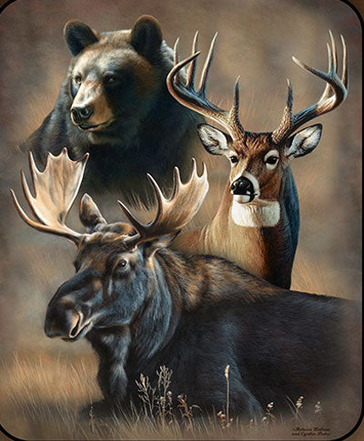 Blanket Queen Signature Select - Animal Ct- JQ Dynamic Trio Bear Deer Moose