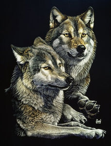 Blanket Queen Signature Select Wolf CT MHS Wolves Pair