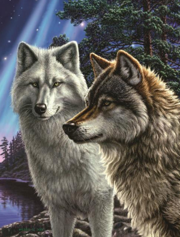 Blanket Queen Signature Select Wolf CT Together Wolves