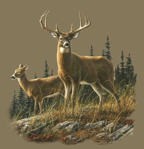 Blanket Queen Signature Select Deer CT Autumn White Tails
