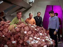 Captain Kirk & A Bunch Of Tribbles