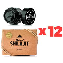 Wholesale: 12 x Natural Shilajit Resin (20 Grams)
