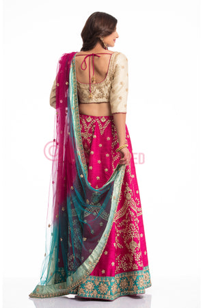 Biege & Pink Lehenga Choli Set back view