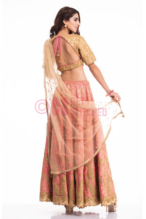 Golden & Pink Lehenga Choli back view