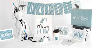 Blue Dog Party Box