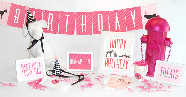Pink Dog Party Box