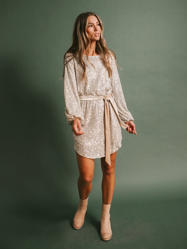 Life Of The Party Dress (Nude/Silver)