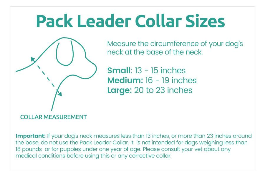 REFURBISHED  Pack Leader Collar