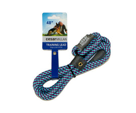 REFURBISHED Official Cesar Millan Training Lead
