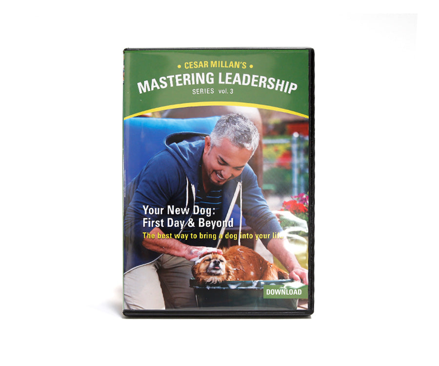 DVD Mastering Leadership Vol 3. Your New Dog - First Day and Beyond - DVD