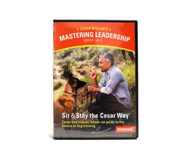 Mastering Leadership Vol 4. Sit & Stay the Cesar Way - Digital Download