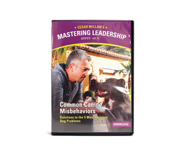 Mastering Leadership Vol 5. Common Canine Misbehaviors - Digital Download