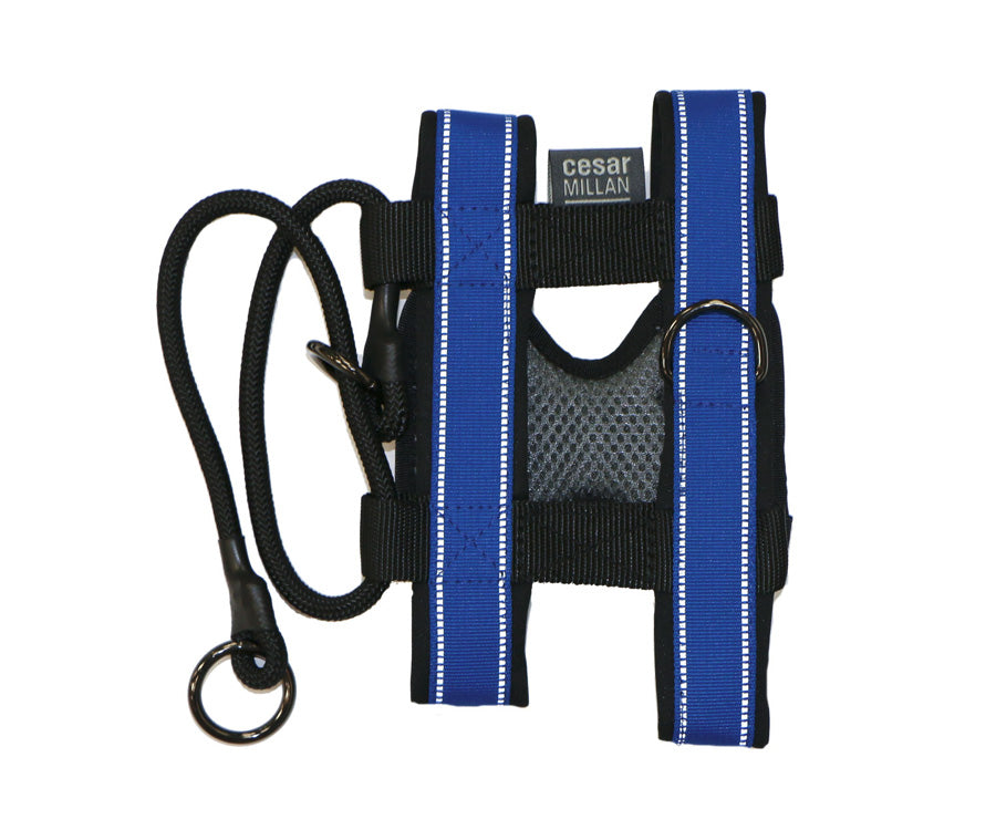 BLUE PACK LEADER COLLAR