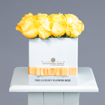Colorado | Small Square White Box - Legendary Roses