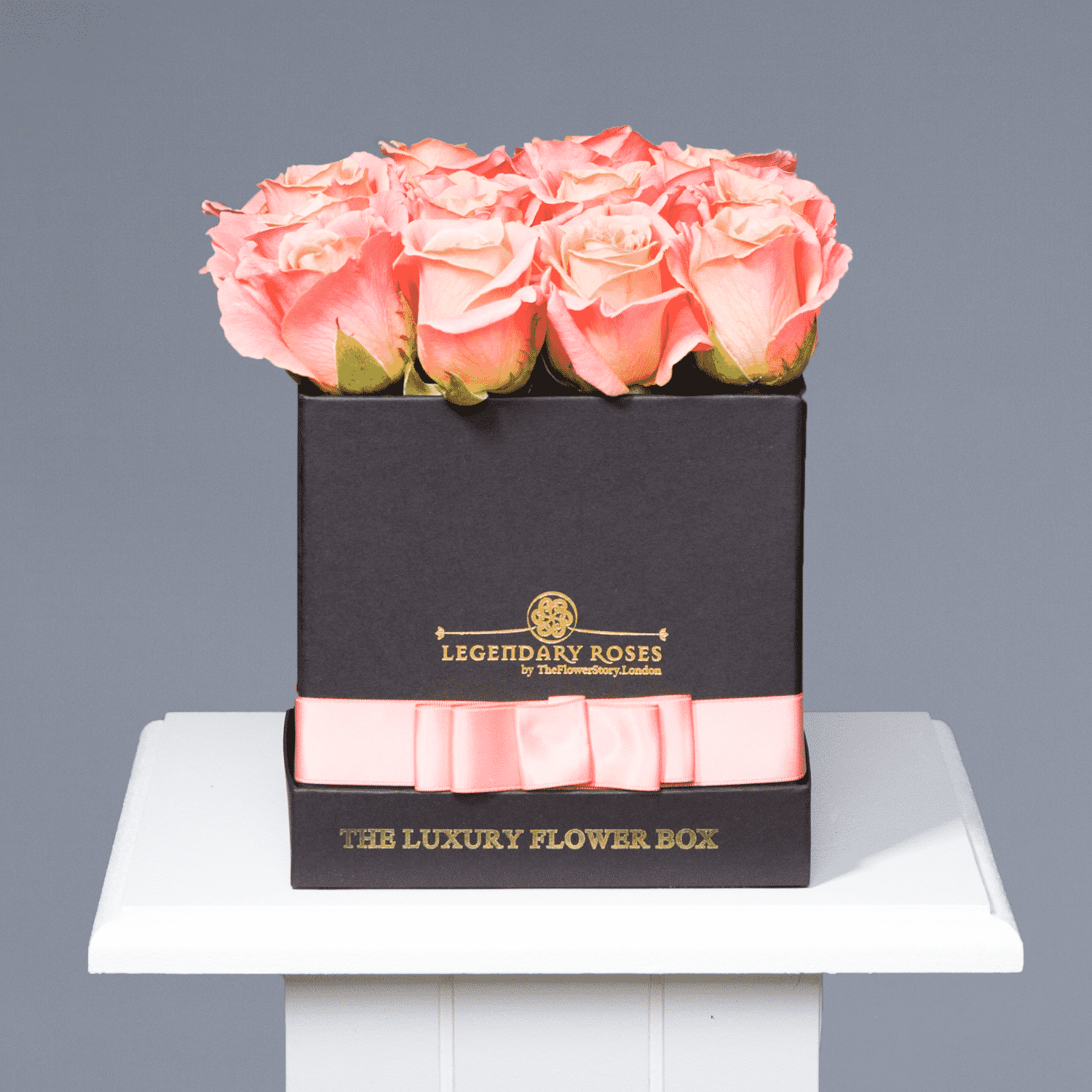 Colorado and Pure Love | Small Square Black Box - Legendary Roses