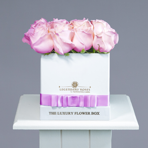 Aqua | Small Square White Box - Legendary Roses