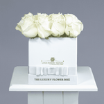 Avelanche | Small Square White Box - Legendary Roses