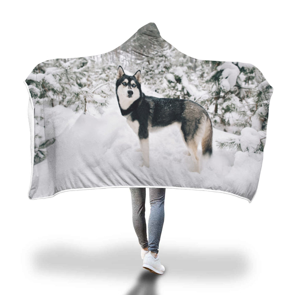 Siberian Husky Dog Hooded Blanket