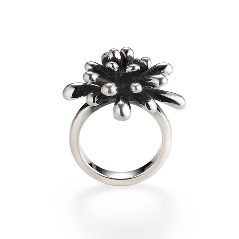 Fireworks Ring