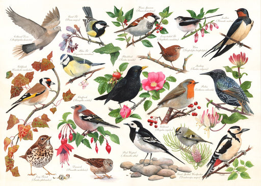 HOP Birds in My Garden 1000 Piece Jigsaw Puzzle