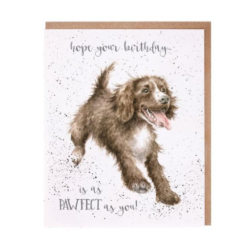 Wrendale 'Paw-fect' Birthday Card