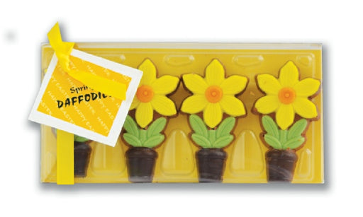 Chocolate Daffodils
