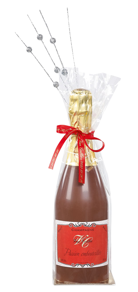 Chocolate Champagne Bottle 275g