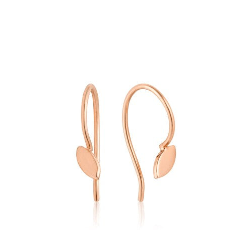 Ania Haie Hook Rose Gold Earrings