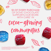DOVE PROMISES Variety Mix Chocolate Candy - Shop The Fox