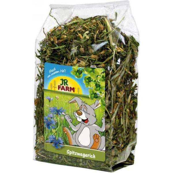 JR FARM Ribwort 100gr