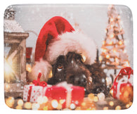 Trixie Xmas Lying Mat for Dogs, 50x40cm