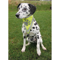 Trixie Safer Life Scarf for Dog XS-S 28 cm