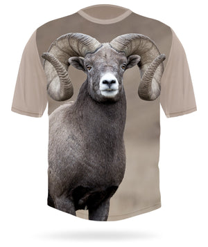 Bighorn sheep t-shirt short sleeve by Hillman hunting gear