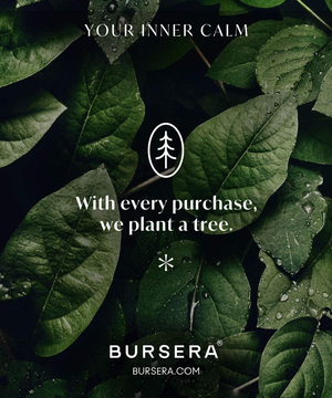 Bursera White Marble Incense Holder, Tree Planted with Every Order, Italian Carrara White Marble Holder for Incense Sticks, Incense Stick Holder