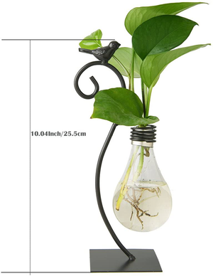 Marbrasse Desktop Glass Planter Hydroponics Vase,Planter Bulb Vase with Holder for Home Decoration,Modern Creative Bird Plant Terrarium Stand, Scindapsus Container (Bulb Vase)