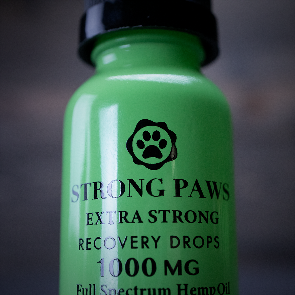 Strong Paws CBD Recovery Drops - 1000MG