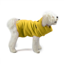 A pullover dog coat for the body and a button on hood/scarf for the neck.