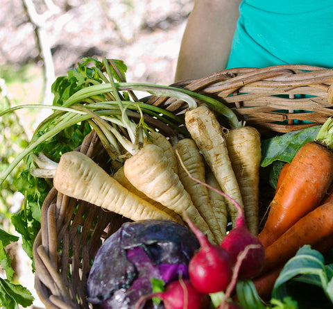 Organic Vegetable & Fruit Box
