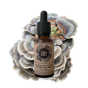 Turkey Tail Tincture