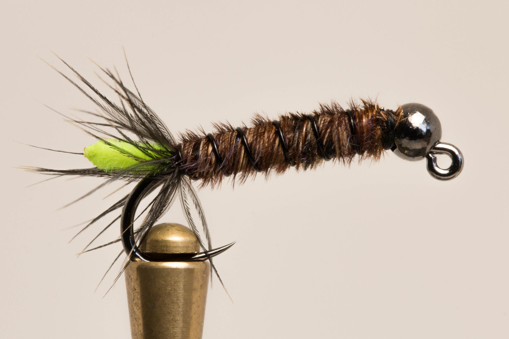 Cased Caddis