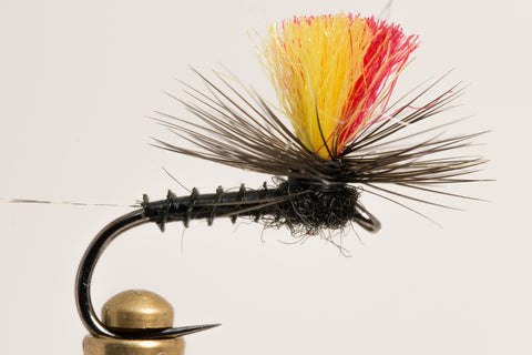 Indicator Mayfly