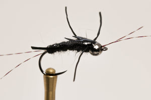 Blacked Out Stonefly