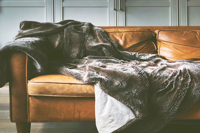 YOUR GUIDE TO HEALTHY WINTER HIBERNATION