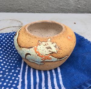 cat chase pot