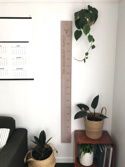 Stag Head personal height chart in whitewash recycled rimu