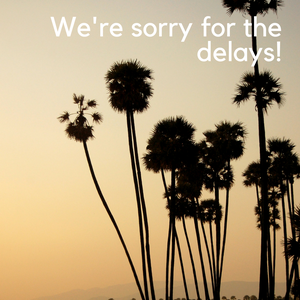 Delayed Shipping Times Due to Holidays and Southern California Wildfires