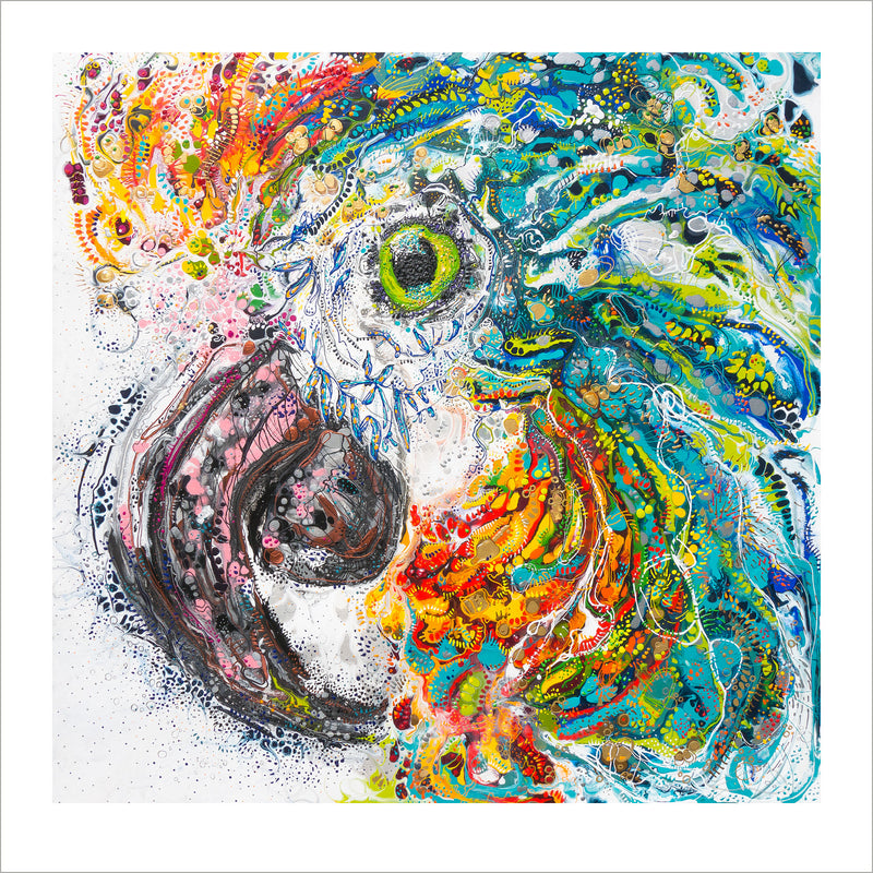 'Morris the Macaw'  50cm x 50cm LIMITED-EDITION Print